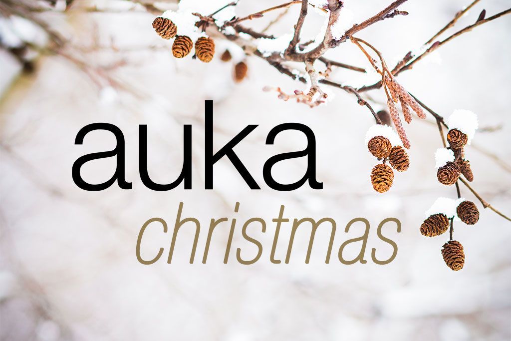 Imagen de portada de Auka, Especial navidad 2016