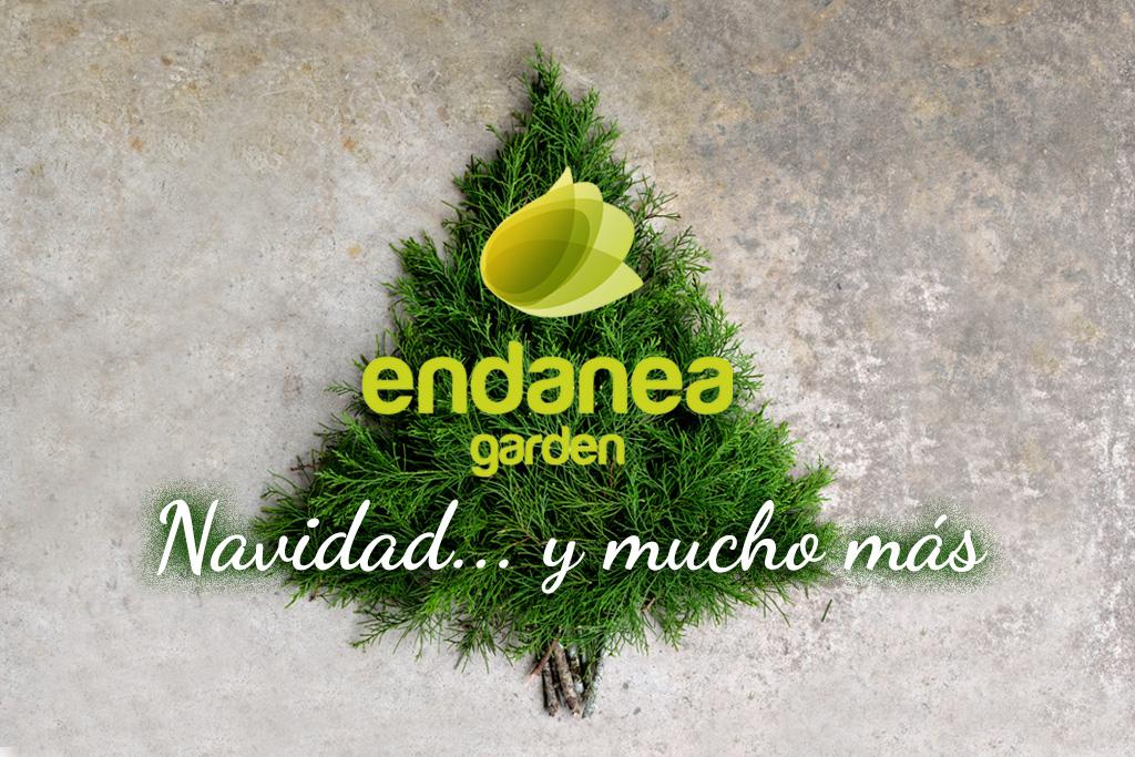 Imagen de portada para Endanea Garden, Especial Navidad 2016.