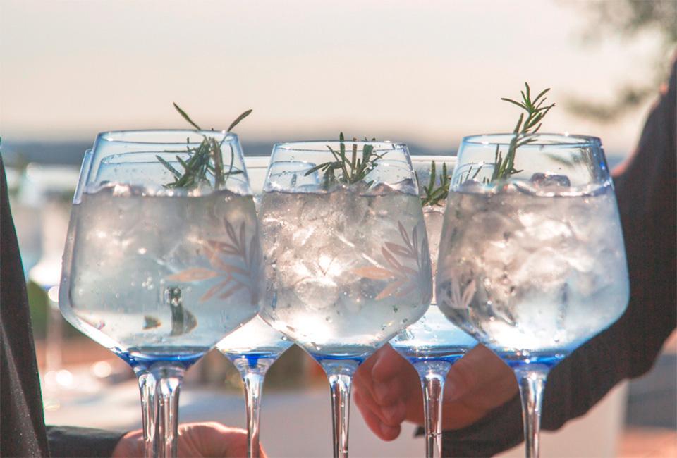 muselines-colaboradores-vantguard-gin-mare-010