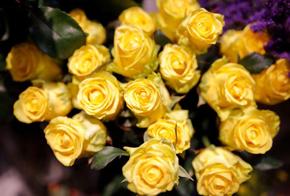muselines-flowers-and-events-floristeria-san-sebastian-008